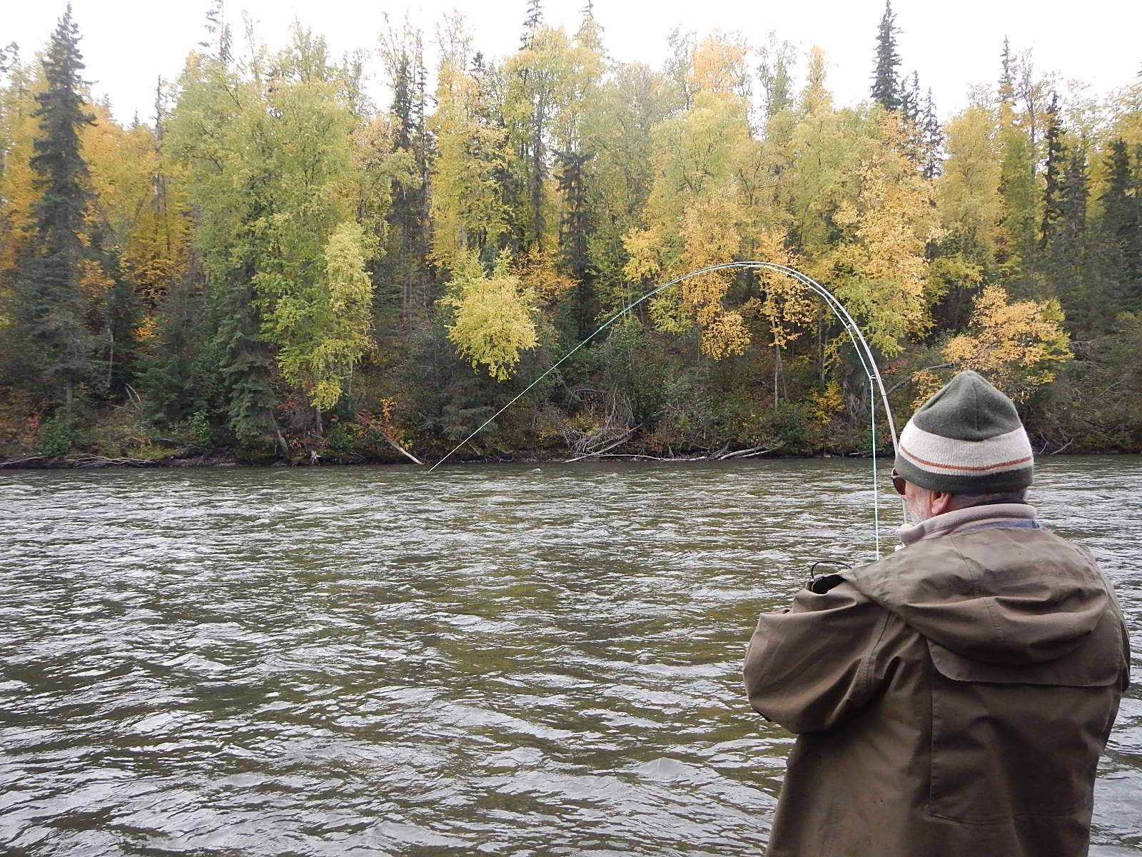 Pictures of exotic fly fishing trips from members for Best fly fishing in us