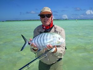Striped Trevally